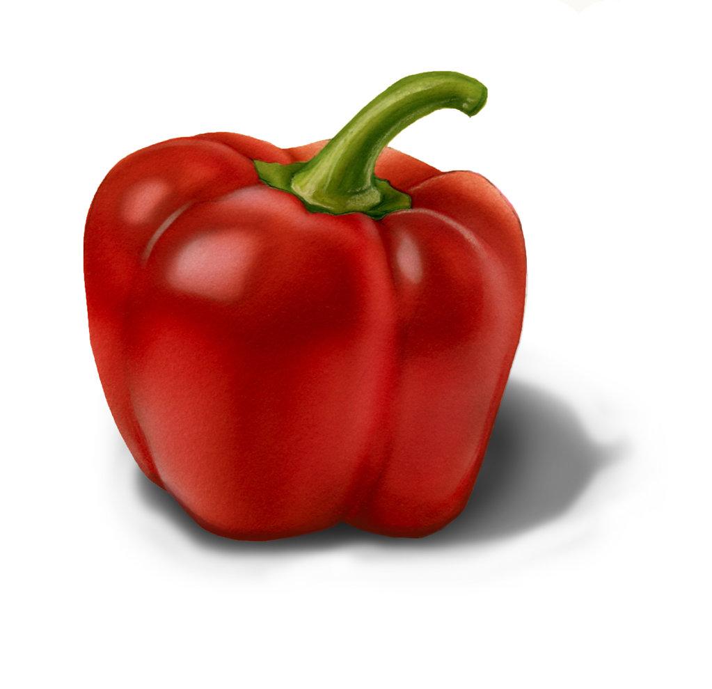 Hofkin-Hedge-PotbMedChSal-PepperF2.jpg